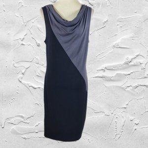 Lucy & Laurel Two-tone Cowl Neck Sleeveless Dress